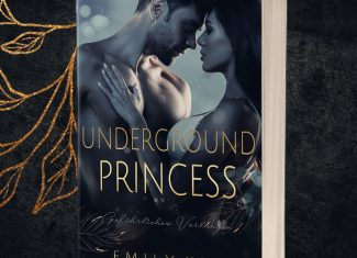 Underground Princess Teil 1: Gefährliches Verlangen (New York Love 3) – Emily Key